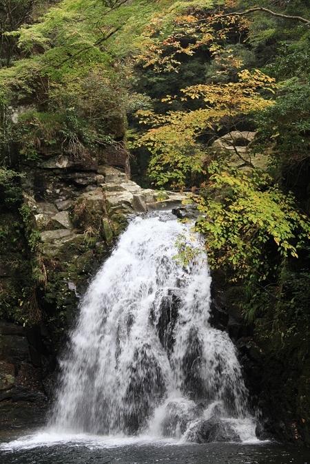 2011 赤目四十八滝 618.JPG