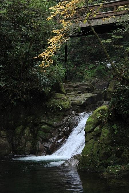 2011 赤目四十八滝 963.JPG