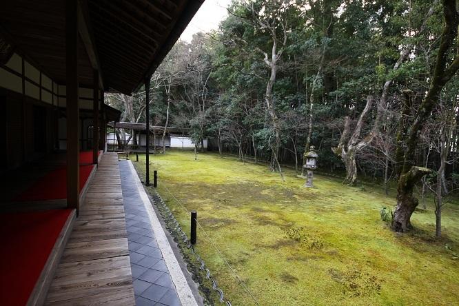 2013 京都大徳寺高桐院 011.JPG