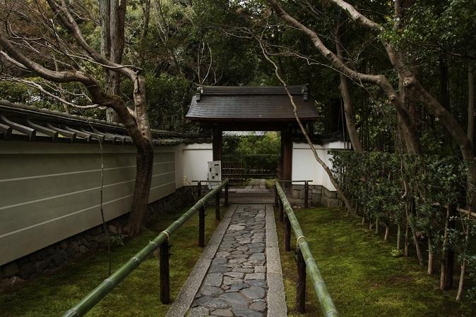 2013 京都大徳寺高桐院 032.JPG