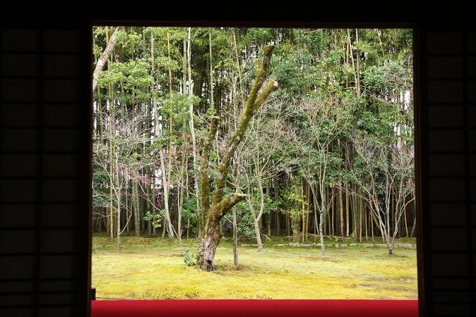 2013 京都大徳寺高桐院 054.JPG