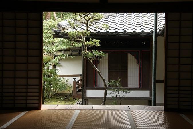 2013 京都大徳寺高桐院 082.JPG