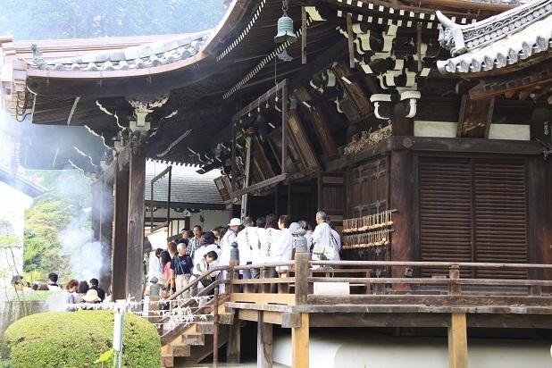 2011三室戸寺の紫陽花 190.JPG