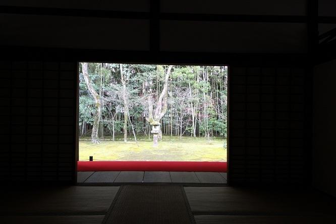 2013 京都大徳寺高桐院 008.JPG