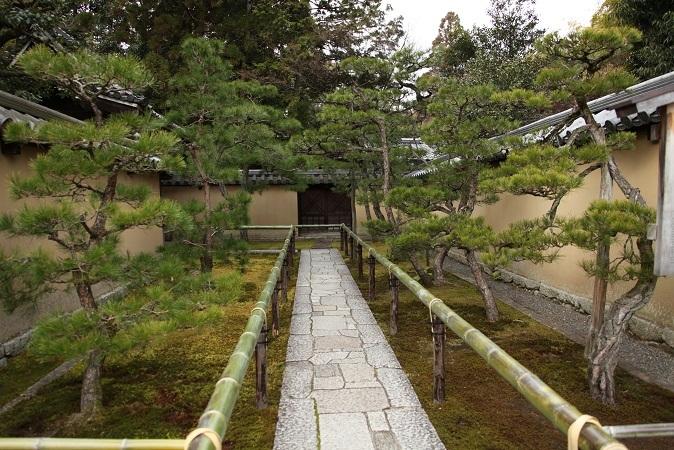 2013 京都大徳寺高桐院 021.JPG