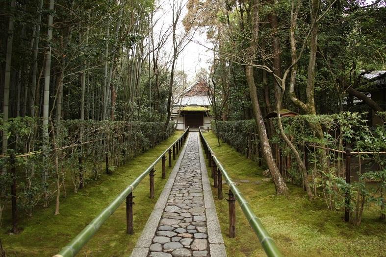 2013 京都大徳寺高桐院 025.JPG