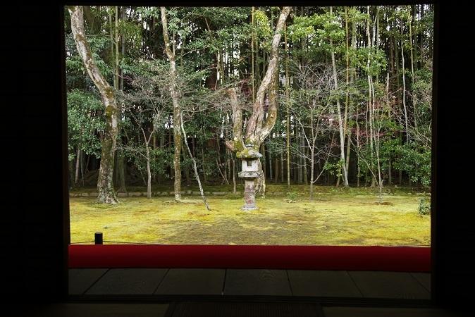 2013 京都大徳寺高桐院 042.JPG