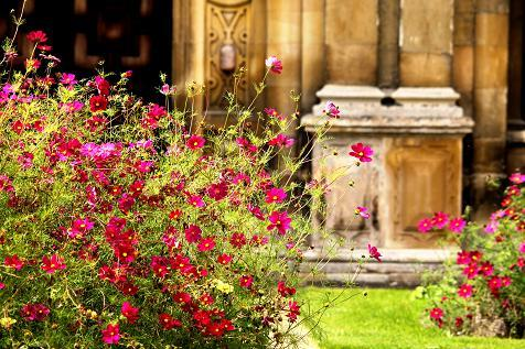 2014 AUDLEY END HOUSE AND GARDENS 118.JPG